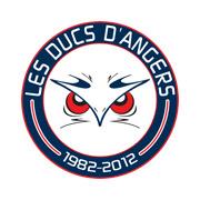 LES DUCS D'ANGERS_CONSEIL_CIR_CII_SUBVENTIONS_EUROPE_FINANCEMENT_RECHERCHE