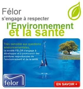 FELOR_web