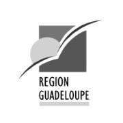 CR GUADELOUPE nb_CONSEIL_CIR_CII_SUBVENTIONS_EUROPE_FINANCEMENT_RECHERCHE